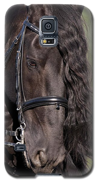Portrait Of A Friesian Galaxy S5 Case