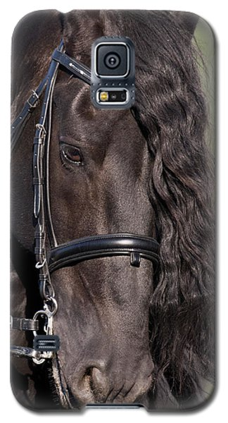 Portrait Of A Friesian Galaxy S5 Case