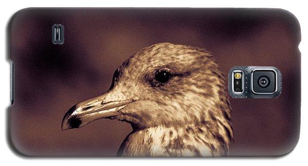 Portrait Of A Gull Galaxy S5 Case