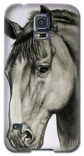 Portrait Of A Horse Galaxy S5 Case