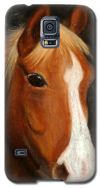 Portrait Of A Horse Galaxy S5 Case by Jasna Dragun