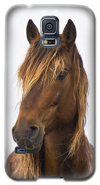 Portrait Of A Mustang Galaxy S5 Case