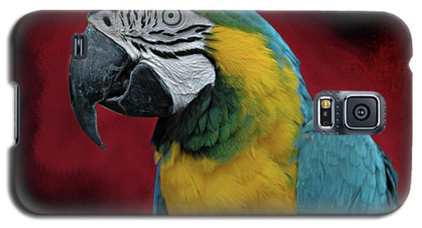 Galaxy S5 Case featuring the photograph Portrait Of A Parrot by Jeff Burgess