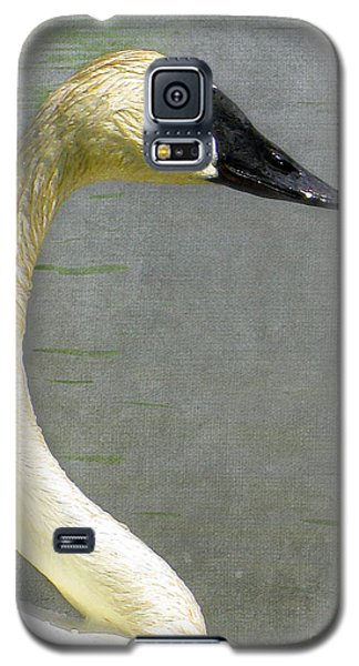 Portrait Of A Pond Swan Galaxy S5 Case
