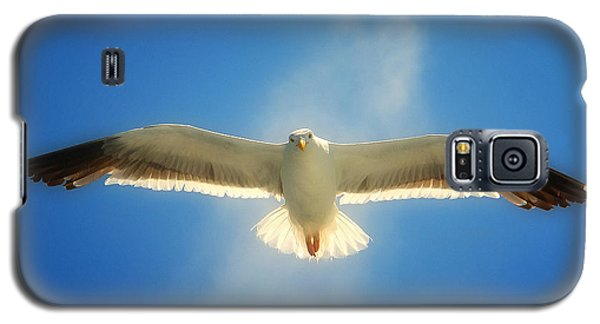Galaxy S5 Case featuring the photograph Portrait Of A Seagull by John A Rodriguez