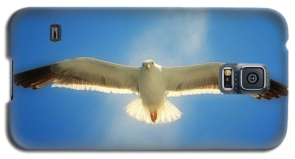 Portrait Of A Seagull Galaxy S5 Case by John A Rodriguez