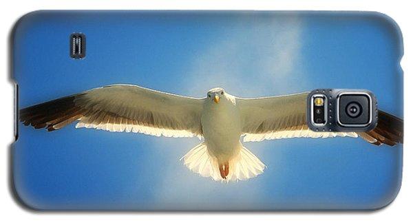 Portrait Of A Seagull Galaxy S5 Case