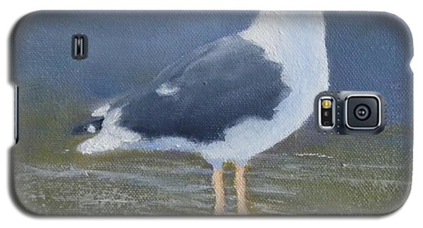 Portrait Of A Seagull Galaxy S5 Case