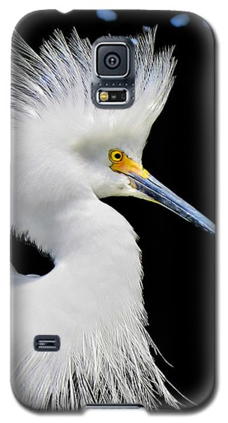 Portrait Of A Snowy White Egret Galaxy S5 Case by Jennie Breeze