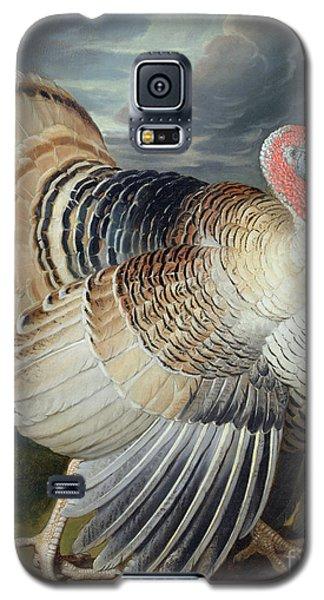 Portrait Of A Turkey  Galaxy S5 Case by Johann Wenceslaus Peter Wenzal