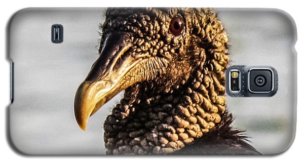 Portrait Of A Vulture Galaxy S5 Case