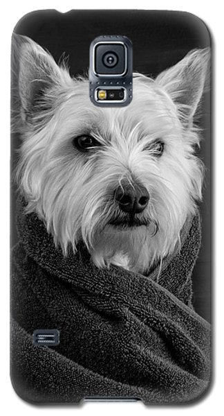 Portrait Of A Westie Dog Galaxy S5 Case by Edward Fielding