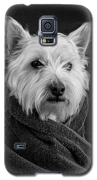 Portrait Of A Westie Dog Galaxy S5 Case