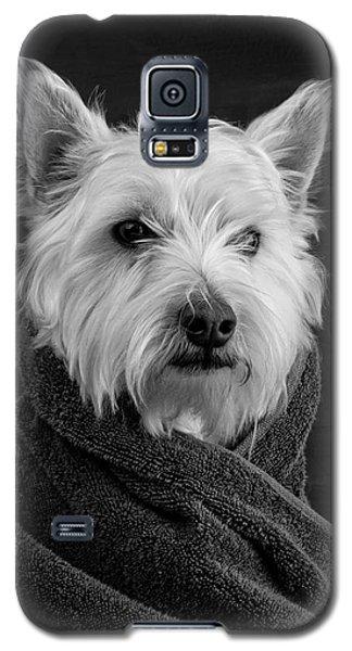 Portrait Of A Westie Dog Galaxy S5 Case by Edward Fielding