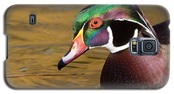 Portrait Of A Wood Duck  Galaxy S5 Case