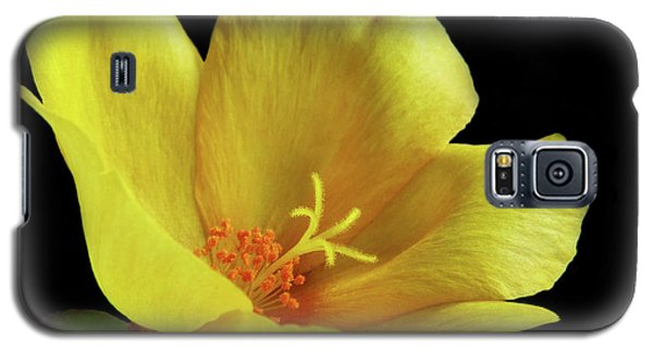 Galaxy S5 Case featuring the photograph Portrait Of A Yellow Purslane Flower by David and Carol Kelly