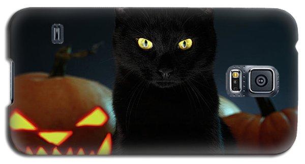 Portrait Of Black Cat With Pumpkin On Halloween Galaxy S5 Case