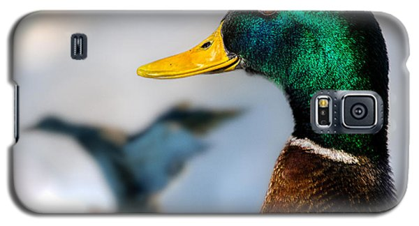 Portrait Of Duck 2 Galaxy S5 Case