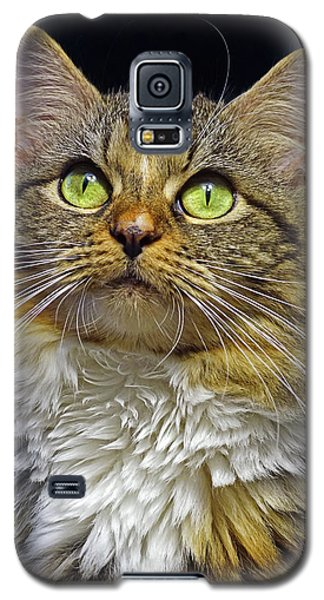 Portrait Of Holly Galaxy S5 Case