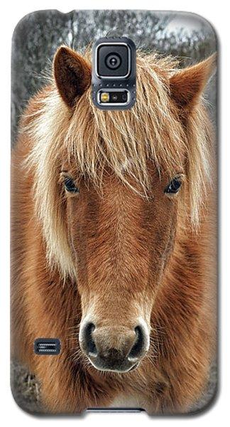 Portrait Of Mieke's Noe'lani Galaxy S5 Case