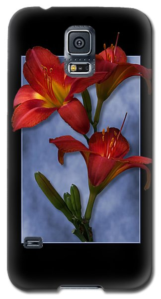 Portrait Of Red Lily Flowers Galaxy S5 Case