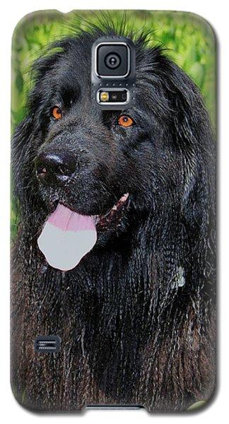 Portrait Of Sierra Galaxy S5 Case
