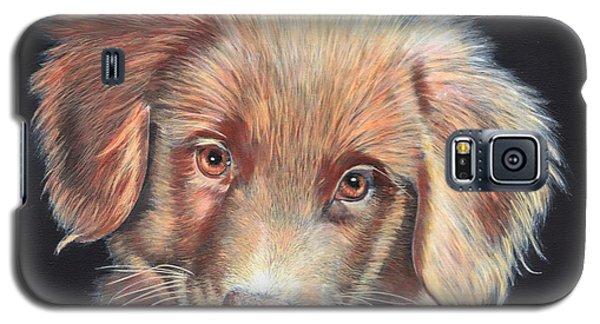 Portrait Of Toby Galaxy S5 Case