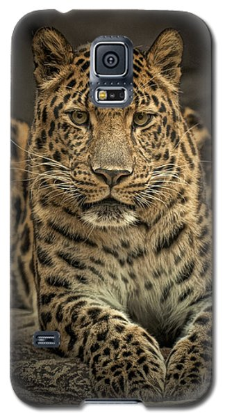 Galaxy S5 Case featuring the photograph Poser by Cheri McEachin