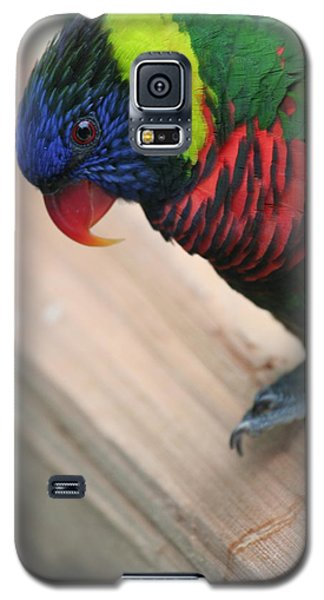 Galaxy S5 Case featuring the photograph Post Position by Laddie Halupa