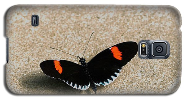 Postman Butterfly Galaxy S5 Case
