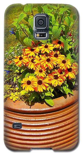 Pot O' Gold Galaxy S5 Case by Randy Rosenberger