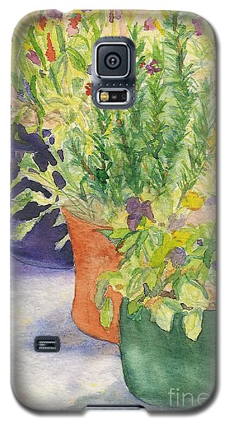 Galaxy S5 Case featuring the painting Potted Beauties  by Vicki  Housel