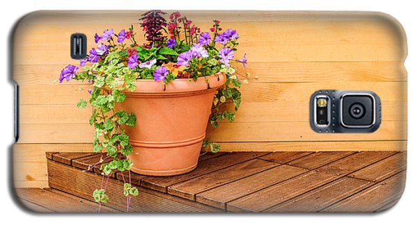Potted Flowers Still Life Galaxy S5 Case