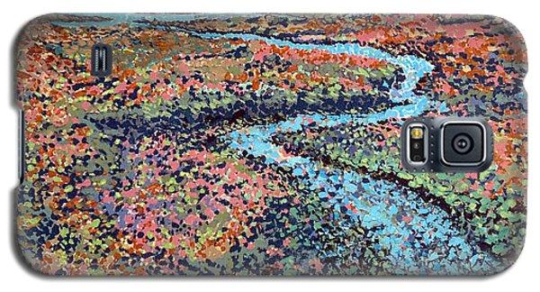 Pottery Creek Galaxy S5 Case