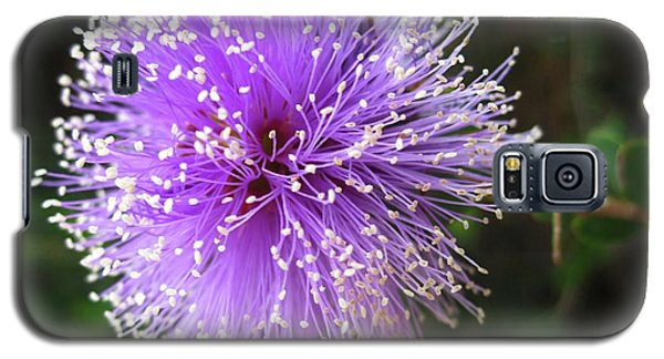 Galaxy S5 Case featuring the photograph Purple Orb by Mary Ellen Frazee