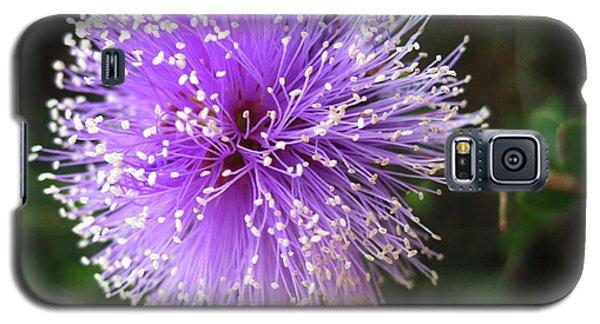 Purple Orb Galaxy S5 Case