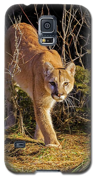 Power And Grace Galaxy S5 Case by Jack Bell