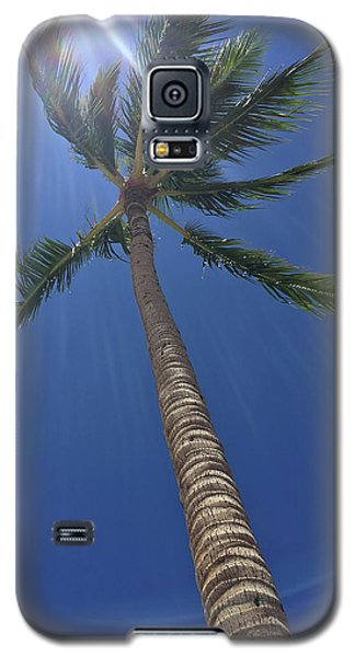 Powerful Palm Galaxy S5 Case by Karen Nicholson