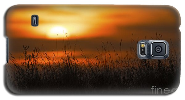 Prairie Like... Galaxy S5 Case