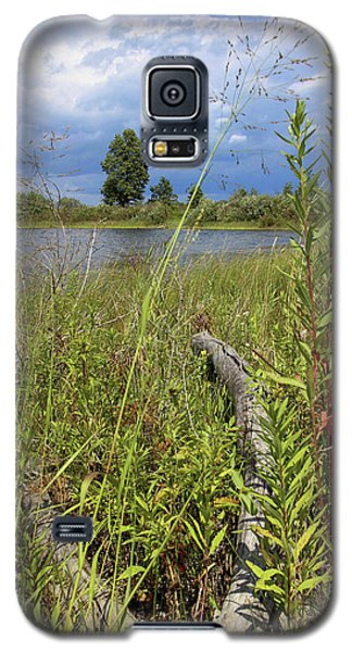 Prairie Meets Wetland Galaxy S5 Case by Scott Kingery