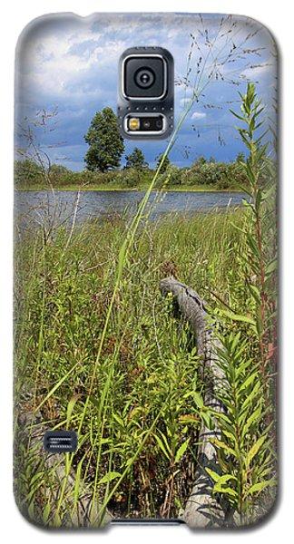 Prairie Meets Wetland Galaxy S5 Case