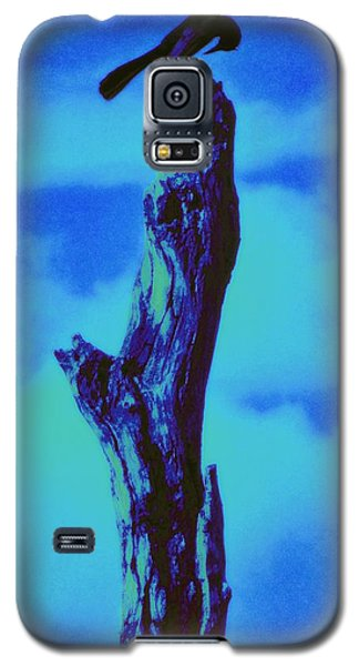 Praying Black Bird Grace In Nature Galaxy S5 Case
