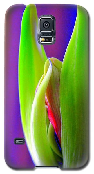 Praying Leaves Galaxy S5 Case