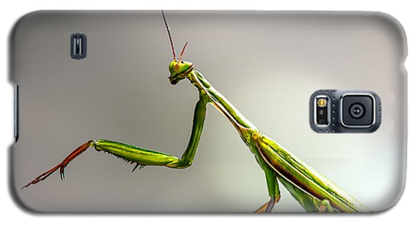 Praying Mantis  Galaxy S5 Case by Bob Orsillo