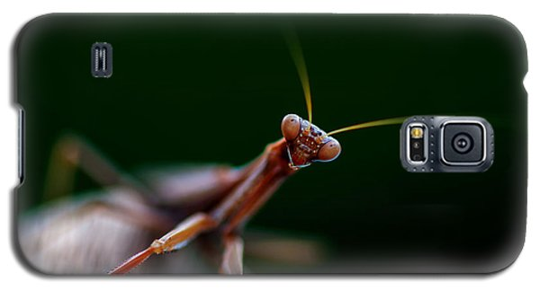 Galaxy S5 Case featuring the photograph Praying Mantis by Rob Hemphill