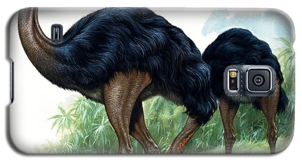 Pre-historic Birds Galaxy S5 Case