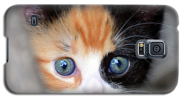 Galaxy S5 Case featuring the photograph Precious by David Lee Thompson