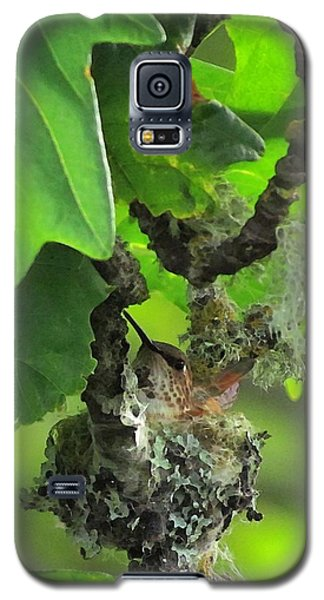 Precious Nature Galaxy S5 Case