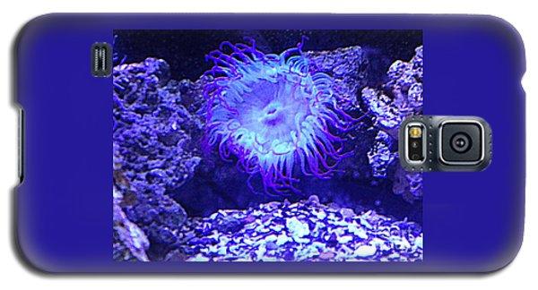 Predatory Terrestrial Sea Anemone Galaxy S5 Case