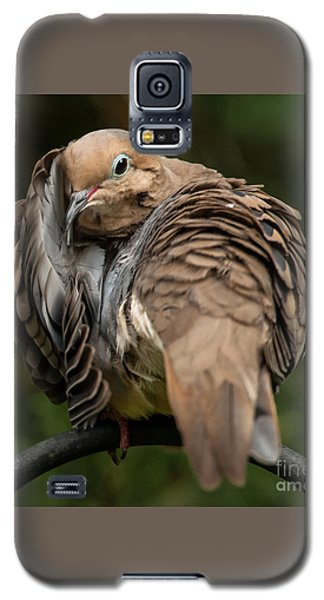 Galaxy S5 Case featuring the photograph Preening Dove by Jim Moore